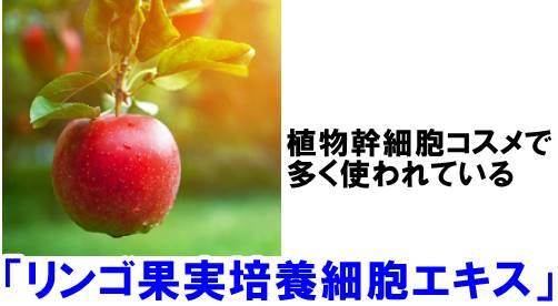 NULL フェイスローションはリンゴ果実培養細胞エキス使用