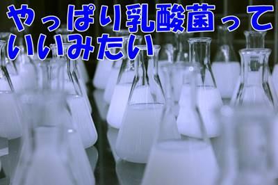 【菌活・腸活の乳酸菌サプリランキング】バイオテクノロジー