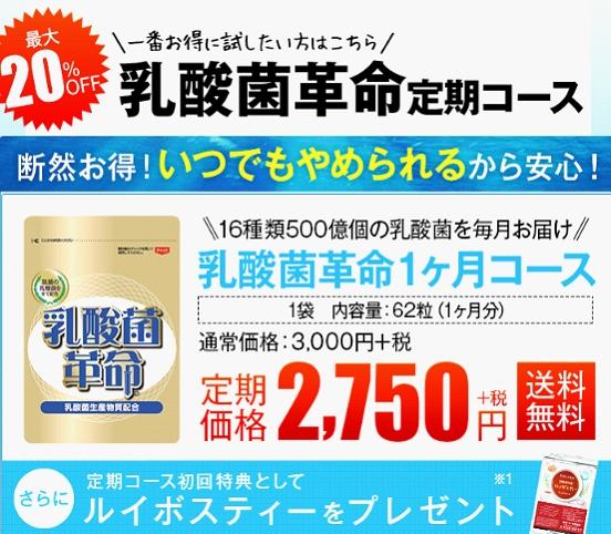 乳酸菌革命公式サイト価格