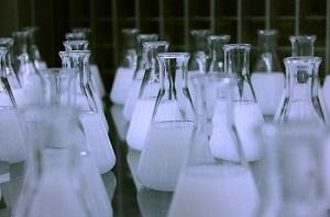 乳酸菌サプリは便秘に効果