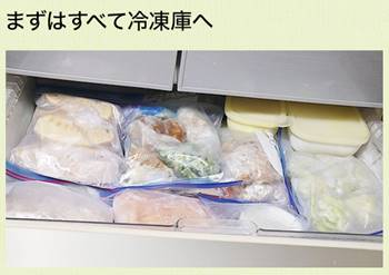 【ココグルメ 使い方】冷凍